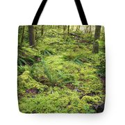 Green Foliage On The Forest Floor Tote Bag