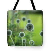 Green Globe Thistles Tote Bag