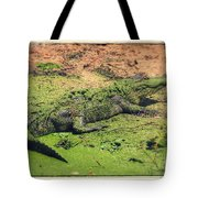 Green Gator With Border Tote Bag