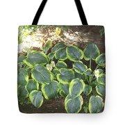 Green Hausta Cartoon Tote Bag