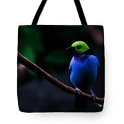 Green Headed Bird Profile Tote Bag