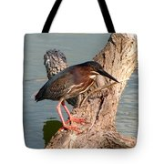 Green Heron 1 Tote Bag
