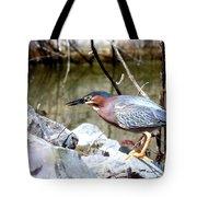 Green Heron . 7d614 Tote Bag