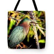 Green Heron At Green Cay Wetlands Tote Bag