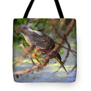 Green Heron Brazos Bend State Park Tote Bag