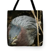 Green Heron Hunting Tote Bag