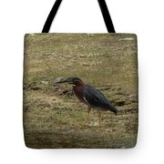 Green Heron In Central Texas Tote Bag