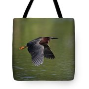 Green Heron In Flight Tote Bag
