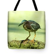 Green Heron In Green Algae Tote Bag
