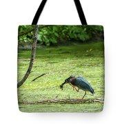 Green Heron Lunch Tote Bag