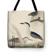 Green Heron, Night Heron, Young Heron, And Great White Heron Tote Bag