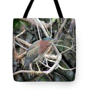 Green Heron On A Branch Tote Bag