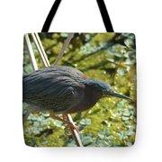 Green Heron On Stilts Tote Bag