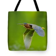 Green Heron On The Downdraft Tote Bag
