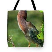 Green Heron Pose Tote Bag