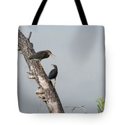 Green Herons At The Water Cooler Tote Bag