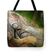 Green Iguana Costa Rica Tote Bag