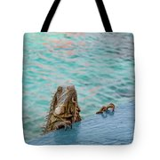 Green Iguana Peering Over Wall Tote Bag