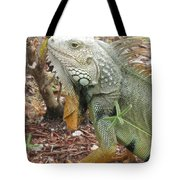 Green Inguana Tote Bag