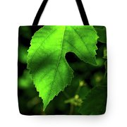 Green Is The Mulberry Leaf Tote Bag