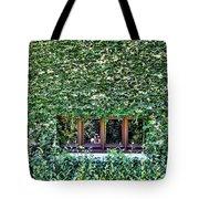 Green Ivy Window  Tote Bag