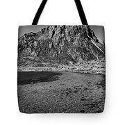 Green Lake Tote Bag
