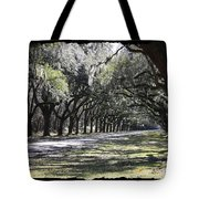 Green Lane With Live Oaks - Black Framing Tote Bag