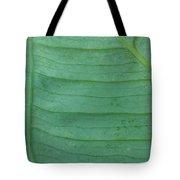 Green Leaf 2 Tote Bag