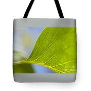 Green Leaf Backlit  Tote Bag