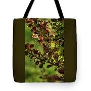 Green Leaf Spotlight Tote Bag