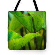 Green Leaves At Cantigny Tote Bag