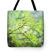 Green Leaves In The Forest Tote Bag