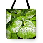 Green Leaves Longwood Garden Tote Bag