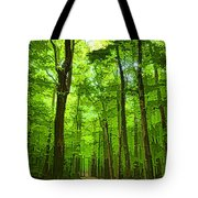 Green Light Harmony - Walking Through The Summer Forest Tote Bag