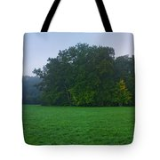 Green Meadow In Autumn Tote Bag