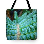 Green Nature Forest Fern Art Print Baslee Troutman  Tote Bag