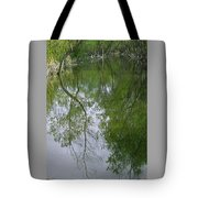 Green Peace - Trees Reflection Tote Bag