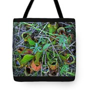 Northern Pitcher Plant Tote Bag