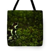Green Poison Dart Frog Tote Bag