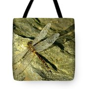 Green Spotted Dragonfly 1 Tote Bag