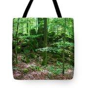Green Stony Forest In Vogelsberg Tote Bag
