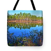 Green Swamp In December Tote Bag