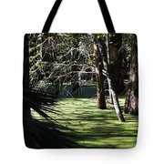 Green Swamp Near Camps Canal Tote Bag