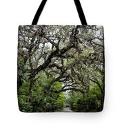 Green Swamp Oak Bower Tote Bag