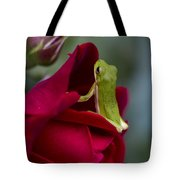 Green Tree Frog And Red Roses Tote Bag