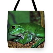 Green Tree Frog With A Smile Tote Bag