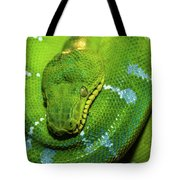 Green Tree Python Tote Bag