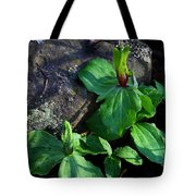 Green Trillium At Sunrise Tote Bag
