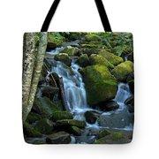 Green Waterfall Tote Bag