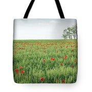 Green Wheat Field Spring Scene Tote Bag